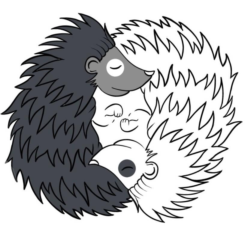 Kontakt do Stowarzyszenia Polish Responsible Hedgehog Owners Association